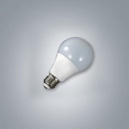LED BULB (D/C)