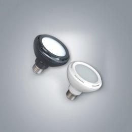 LED PAR30 (확산형)