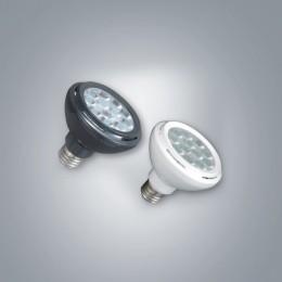 LED PAR30 (집중형)